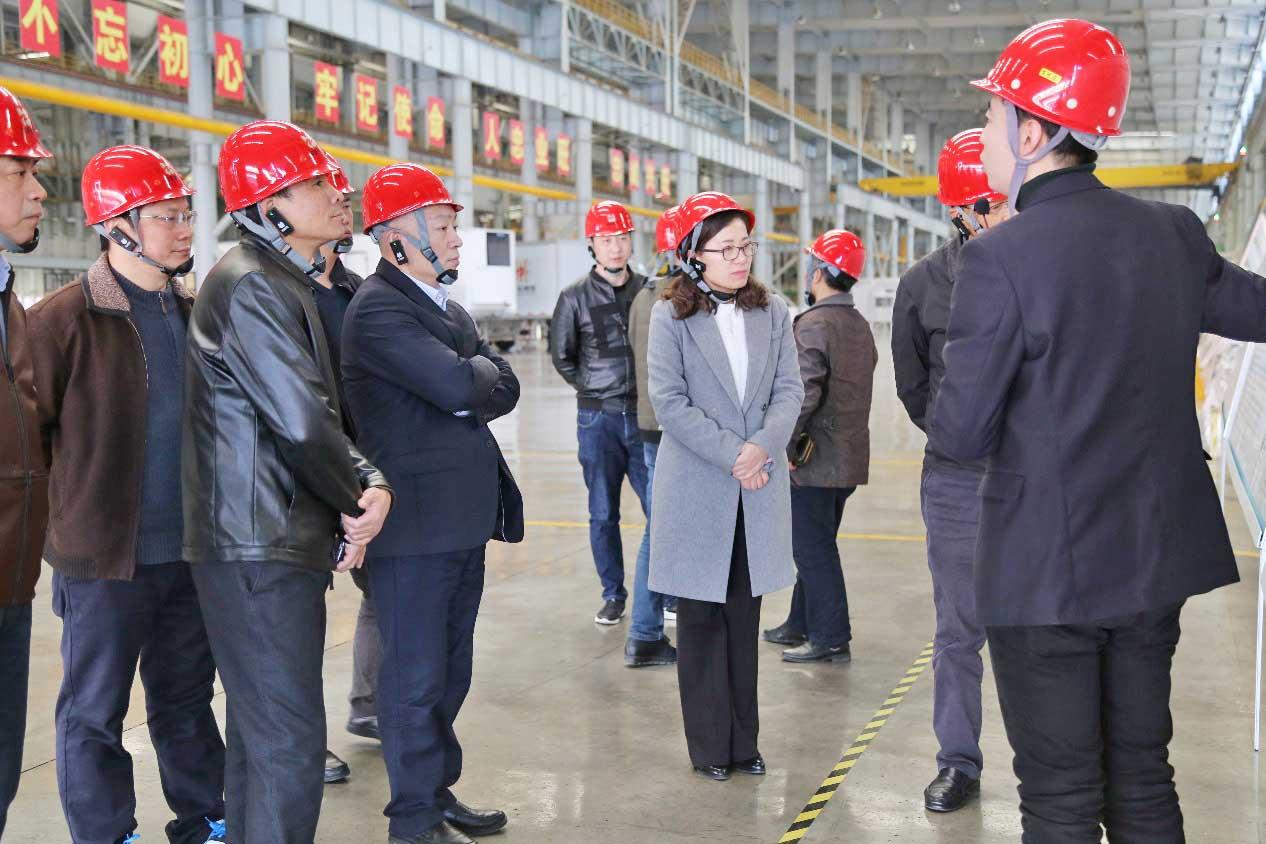安徽芜湖市政府领导来公司参观调研